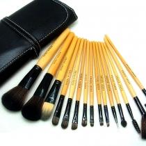 Professional Beauty 15 PCS Pinceaux cosmétiques Set avec une poche